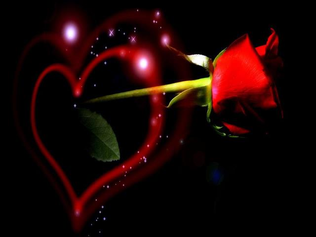 Bunga Cinta Evita S Blog